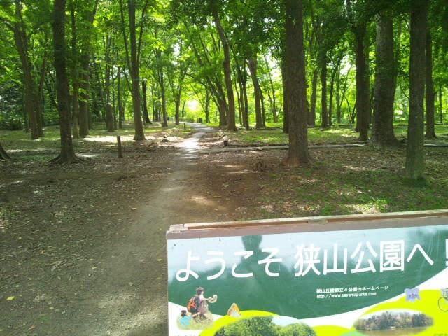 狭山公園でウォーキング