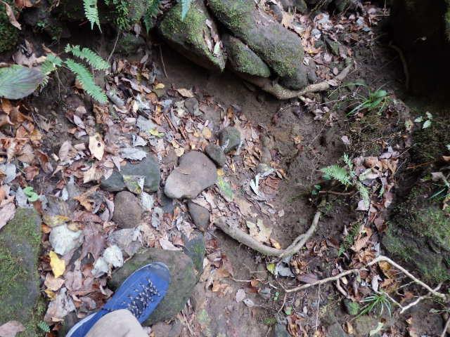 法性寺 登山靴