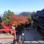 紅葉を見に青梅の御岳山に行ったので画像をアップする