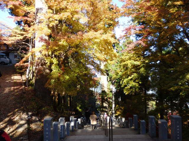 御岳山 11月下旬の紅葉