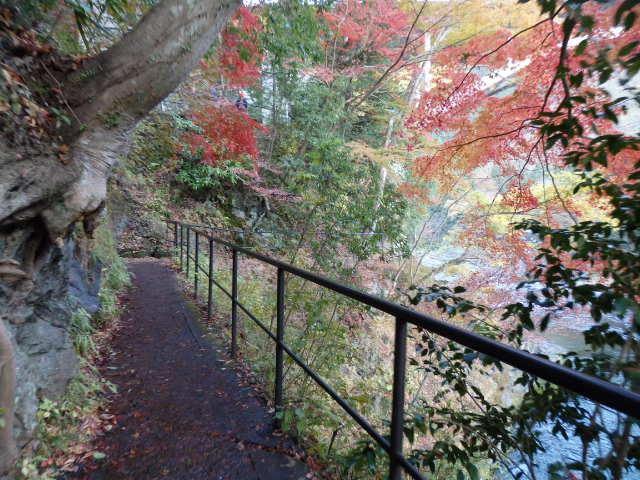 御岳渓谷遊歩道の紅葉