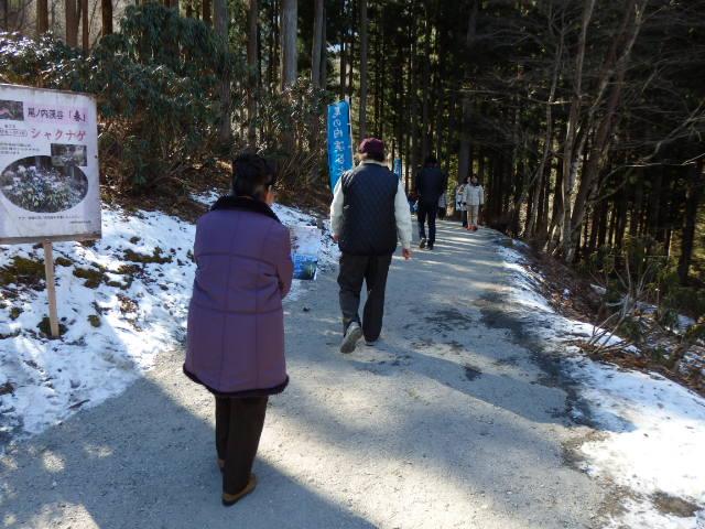 尾ノ内渓谷の氷柱 道