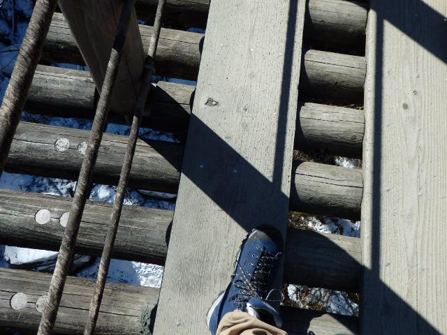 尾ノ内渓谷の氷柱 橋