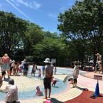 夏の暑い日に小さな子供を遊ばせるのに東村山中央公園は最適