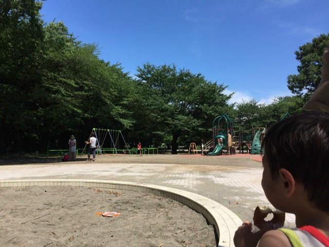 東村山市中央公園 砂場