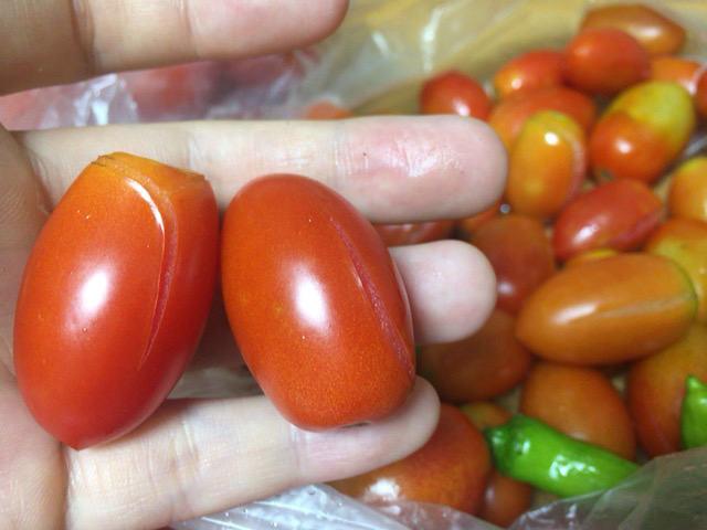 裂けたミニトマト