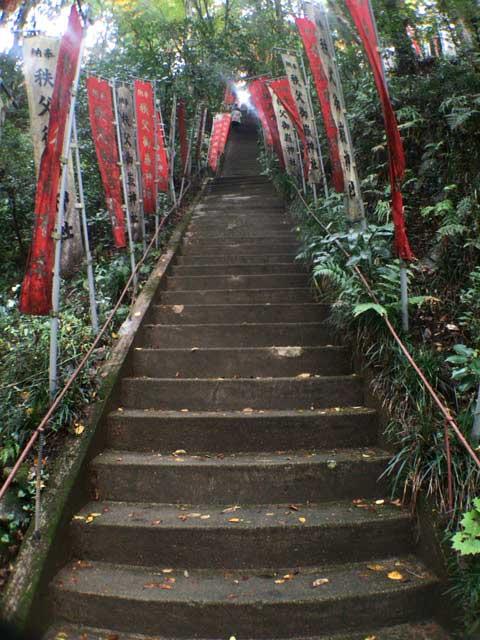 階段 秩父御嶽神社