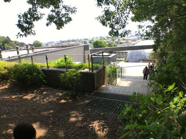 狭山緑地から郷土博物館