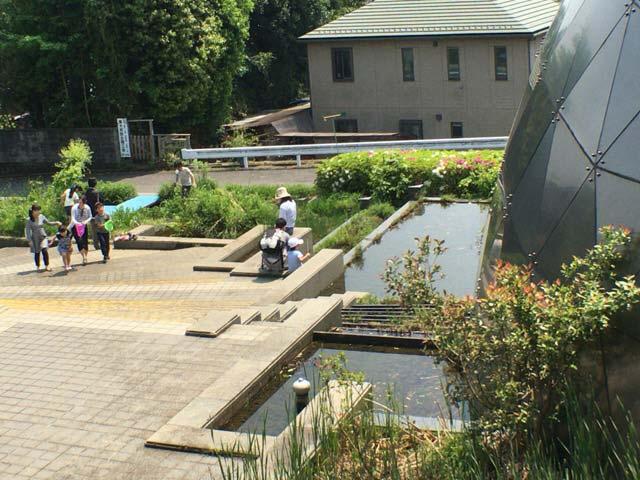 郷土博物館 池