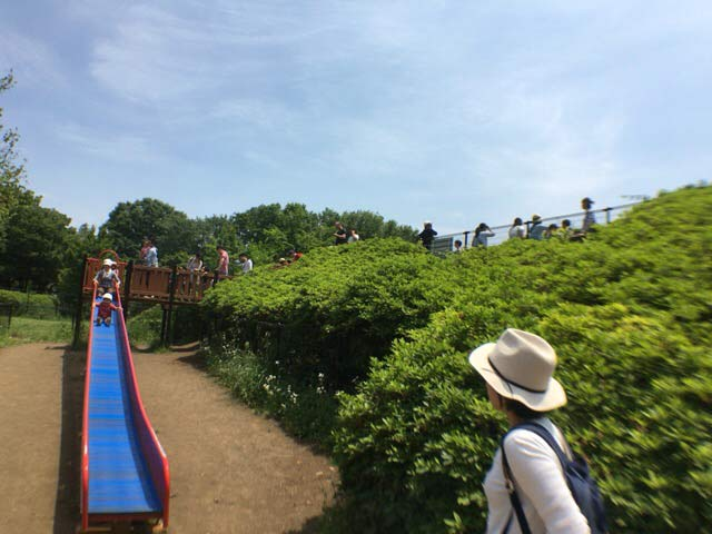 小金井公園 ロング滑り台
