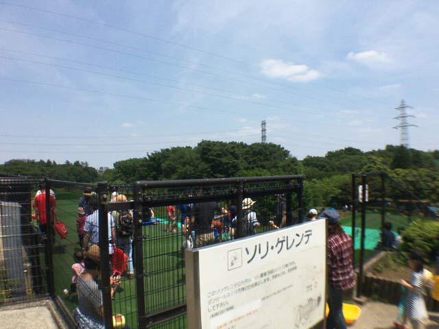 小金井公園 ソリゲレンデ