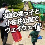子連れに最適!小金井公園で3歳の甥っ子と遊んだので記録しとく。