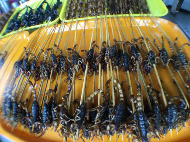 中国でサソリを食べる