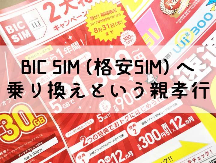 BIC SIM