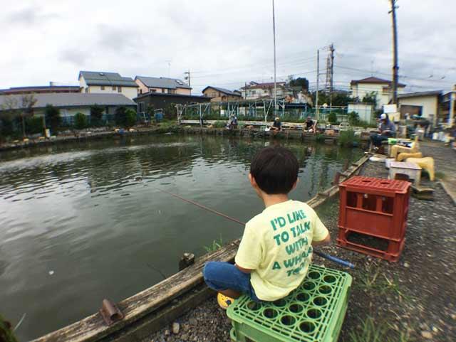 鯉釣り 東村山