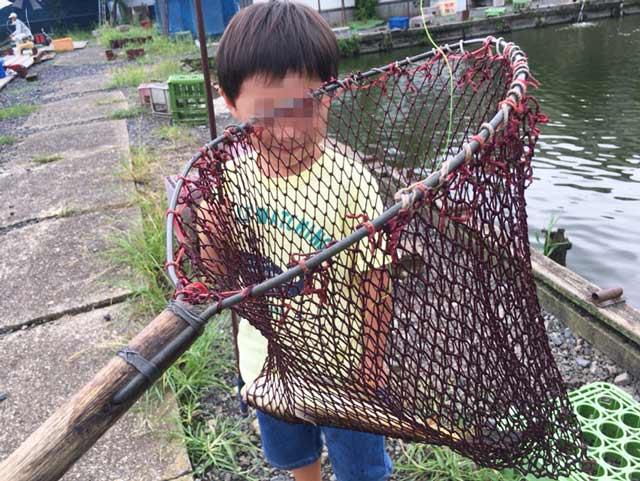 コイ 釣る方法