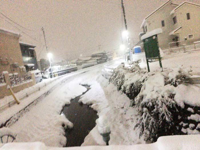 東村山 雪 2018