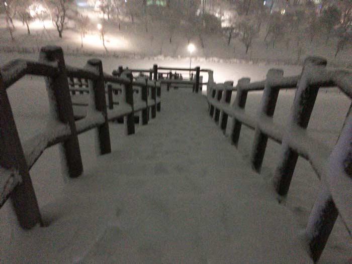 狭山公園 雪