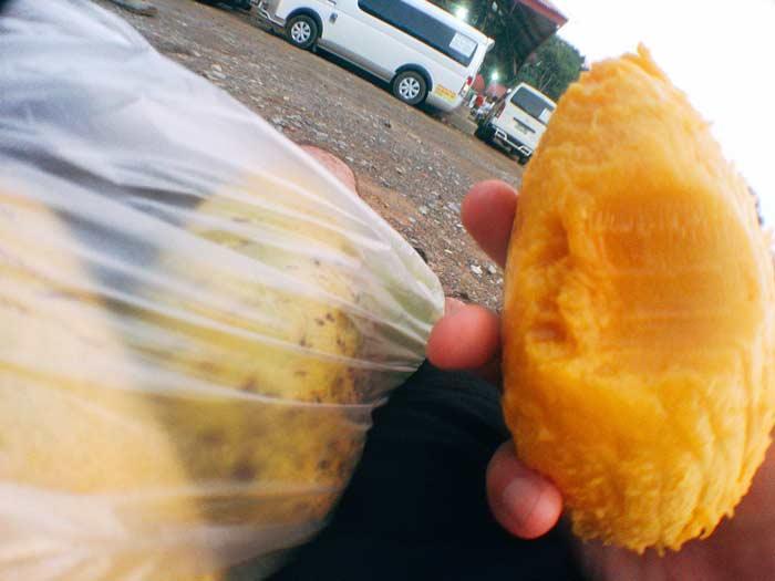 マンゴー フィリピン