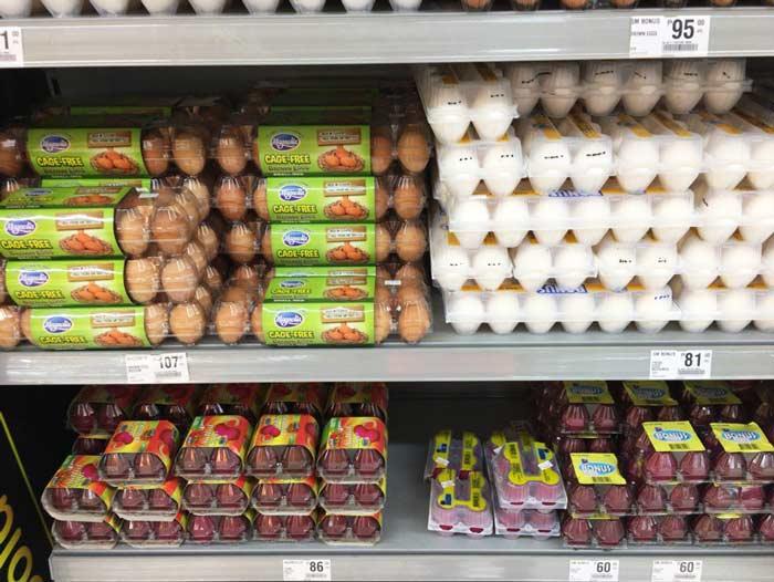 フィリピン 赤い卵