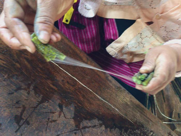 インレー湖 蓮糸