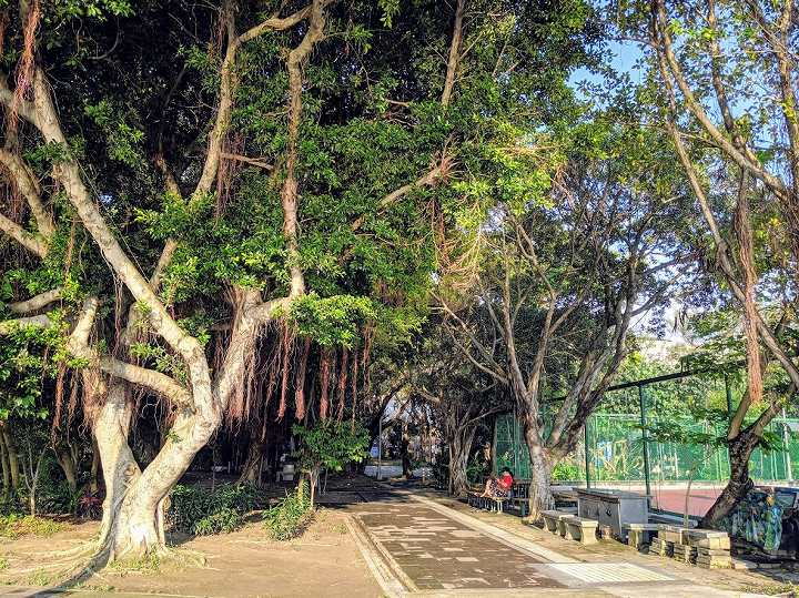 台北 公園